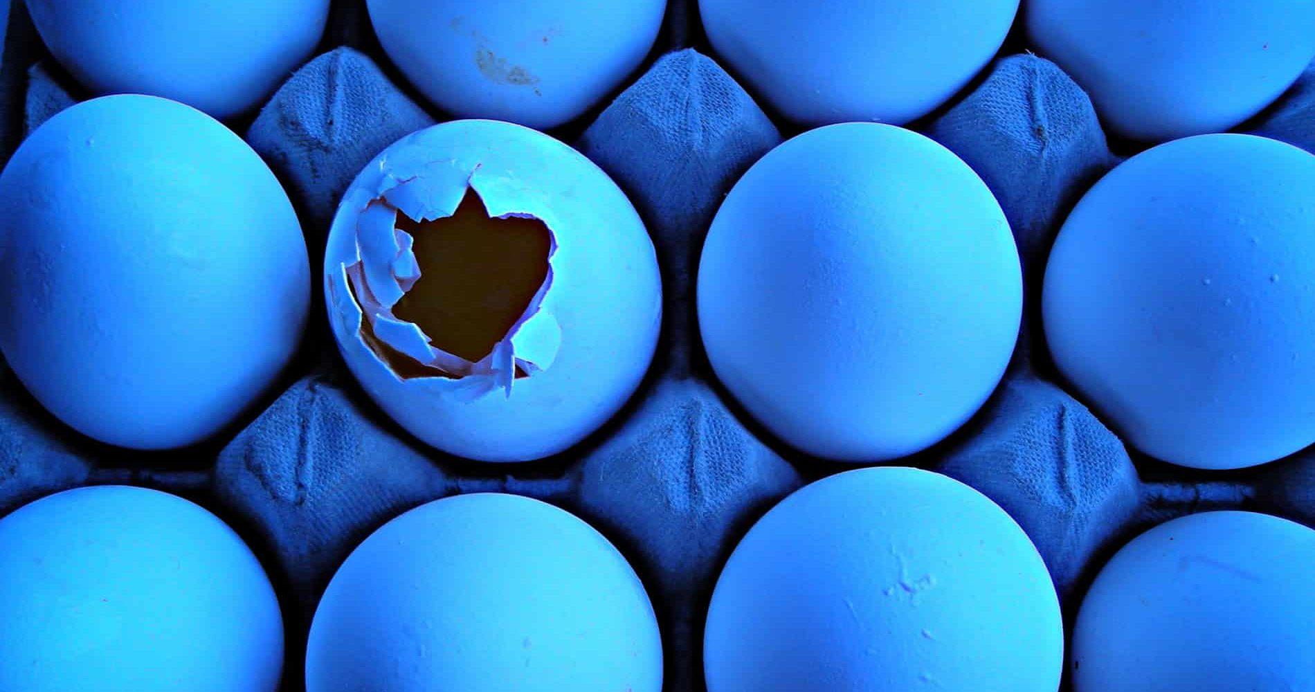 eier-in-blau
